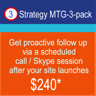 SEO and Marketing Coaching - 3-pack of monthly meetings
